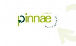 PantallaPinae_ok
